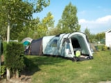 Pitch - Pitch Premium XL >120 m² for 1 large tent + 1 car + electricity 10A - Domaine Le Jardin du Marais