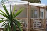 Rental - Mobil Home Loggia (2 Bedrooms) Air-Conditioning - Camping Village Club Le Napoléon