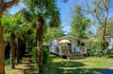 Rental - Chalet 1 chambre 2 pers 24 m2 (Juillet Aout choisissez 7-10-11-14-21 nuits) - AIROTEL Camping OLERON