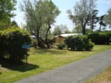 Pitch - Pitch + car + tent or caravan - AIROTEL Camping OLERON