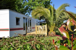Mobile home XL BASIC ECO 3 bedrooms  34.4m²