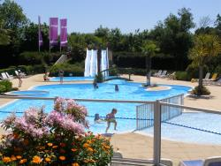 Establishment Airotel Camping Etang Des Haizes - La Haye