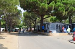 Establishment Eurocamping - Sant Antoni De Calonge