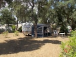 Pitch - Comfort Package (1 tent, caravan or motorhome / 1 car / electricity 10A) - Flower Camping Le Romarin