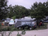 Pitch - Pitch (car + caravan/tent) - Camping Bellevue