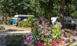Pitch - Grand Confort Package - Camping La Grande Tortue