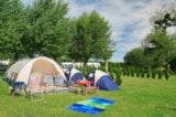 Pitch - Pitch : car + tent/caravan or camping-car (without electricity) - Camping La Route Blanche