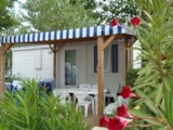 Rental - Mobile Home  23M² (2 Bedrooms) - Camping Les Romarins