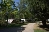 Pitch - Pitches for tent, caravan or camping car . - Camping La Roucateille