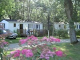 Rental - Confort 3 chambres 28m² - Camping La Roucateille