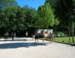 Camping La Roucateille