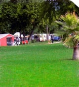 Pitch - Caravan/Large tent/Trailer Tent - Camping Roma Flash