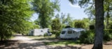 Pitch - Transit night with camping car (incl. electricity) - Castel Les Bois du Bardelet