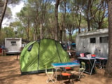 Pitch - Bay for medium/large tent - Rocchette Camping Village