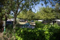 Pitch - Nature Package (1 Tent, Caravan Or Motorhome / 1 Car) - Flower Camping La Chataigneraie