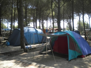 Bay for tent