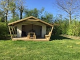 Rental - Furnished Canvas Bungalow Confort  21M²  (Freeflower) 2 Bedrooms + Covered Terrace 9M² - Flower CAMPING LA BRETONNIERE