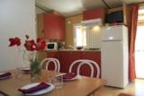 Rental - Cottage Océan ECO 29m² 2 bedrooms (baby bed) + sheltered terrace 11m² - Flower CAMPING LA BRETONNIERE