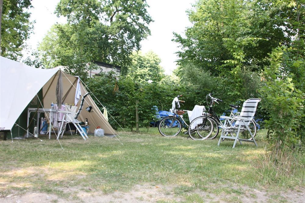 Establishment Camping de la Forêt - Jumièges