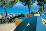 Pitch - Pitch for caravan, large tent, without electricity - Europe Garden