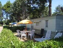Mobile Home BASIC 21 m² - 4 Beds + 1 extra person in the livingroom - 1 bathroom - garden