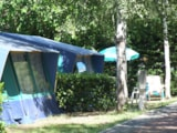 Rental - BUNGALOW TENT 20 m² - 4 Beds + 1 extra person - garden - Camping Villaggio Italgest