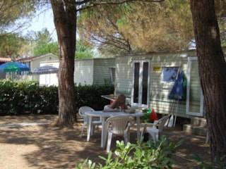 Mobile Home BASIC 24 m² - 4 Beds + 2 extra persons in the livingroom - 1 bathroom - garden