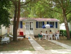 Mobile Home DELUXE (airconditioning included) 24 m² - 4 Beds + 2 extra persons in the livingroom - 1 bathroom - garden