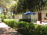 Rental - Mobile Home BASIC 21 m² - 4 Beds + 1 extra person in the livingroom - 1 bathroom - garden - Camping Villaggio Italgest