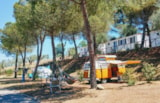 Pitch - Pitch for motorhome/camper - Camping Village Cerquestra