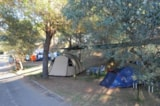 Pitch - Pitch for big tent - Camping Village Cerquestra