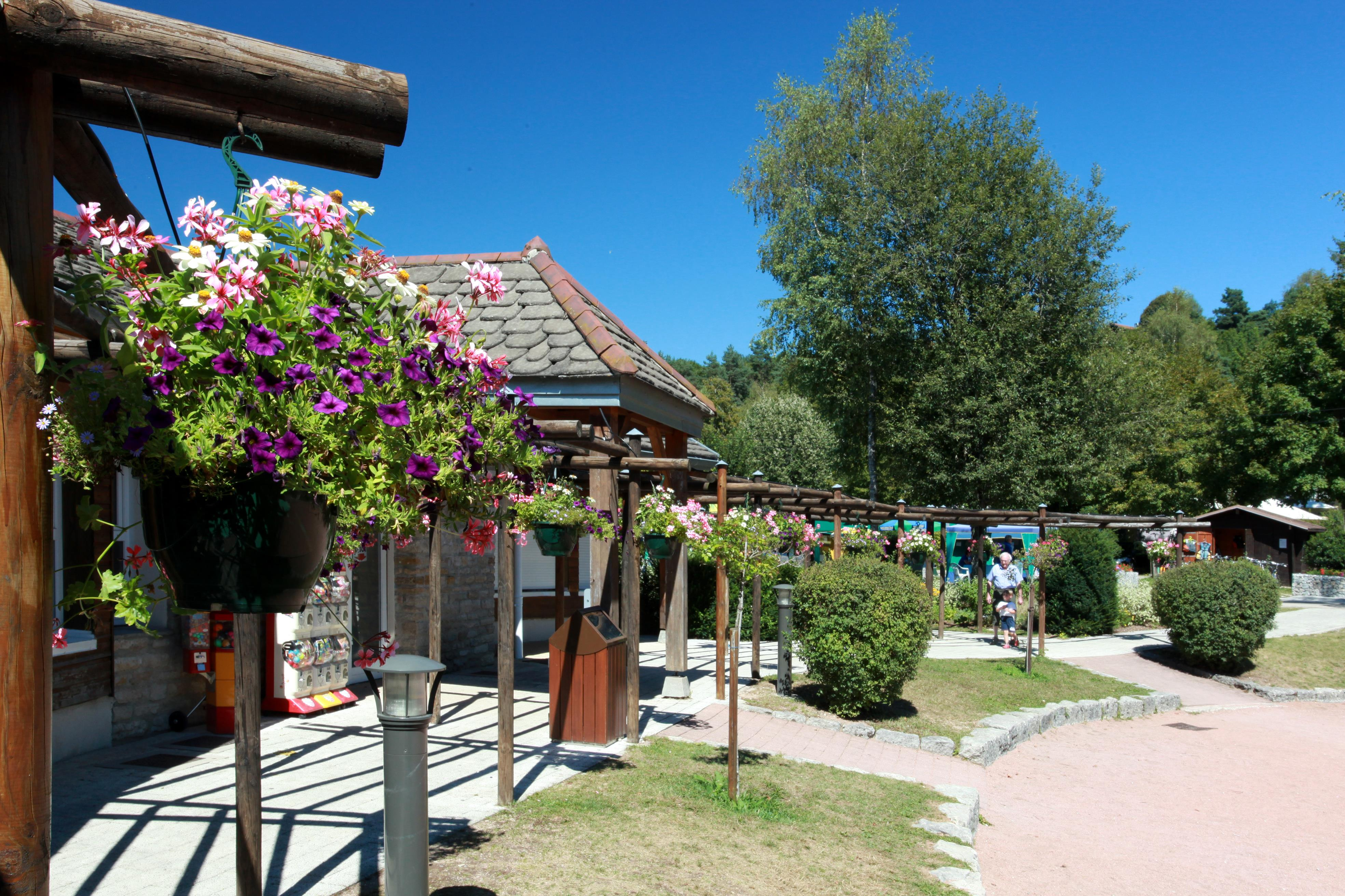 Camping fayolan clairvaux les lacs jura for Chambre d hote jura