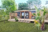 Rental - Mobile-home 2 bedrooms - New 2018 - Camping Mayotte Vacances