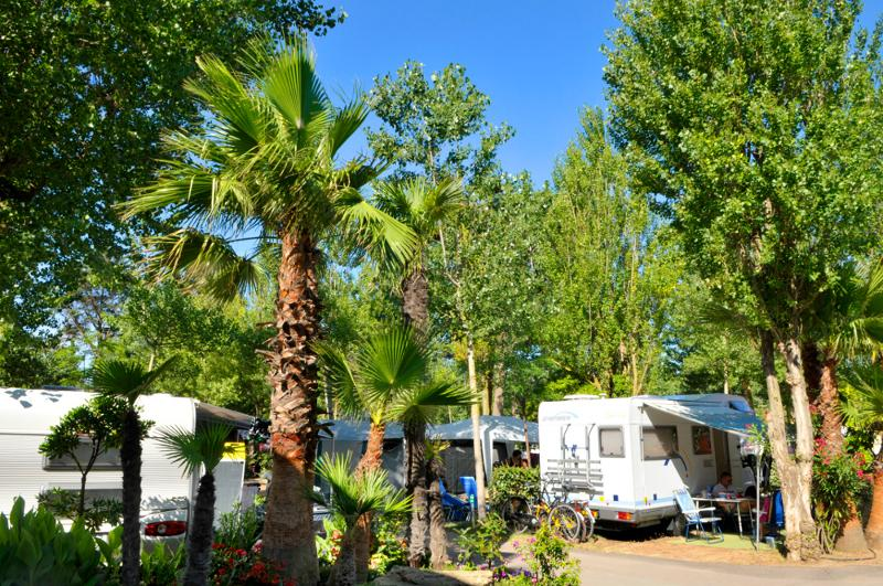 Pitch - Package Pitch +  Tent , Caravan Or Camping-Car + Electricity + Water And Drainage Point - Les Méditerranées - Camping Charlemagne