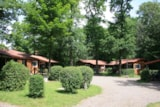 Rental - Chalet Country Lodge - Château Camping La Grange Fort