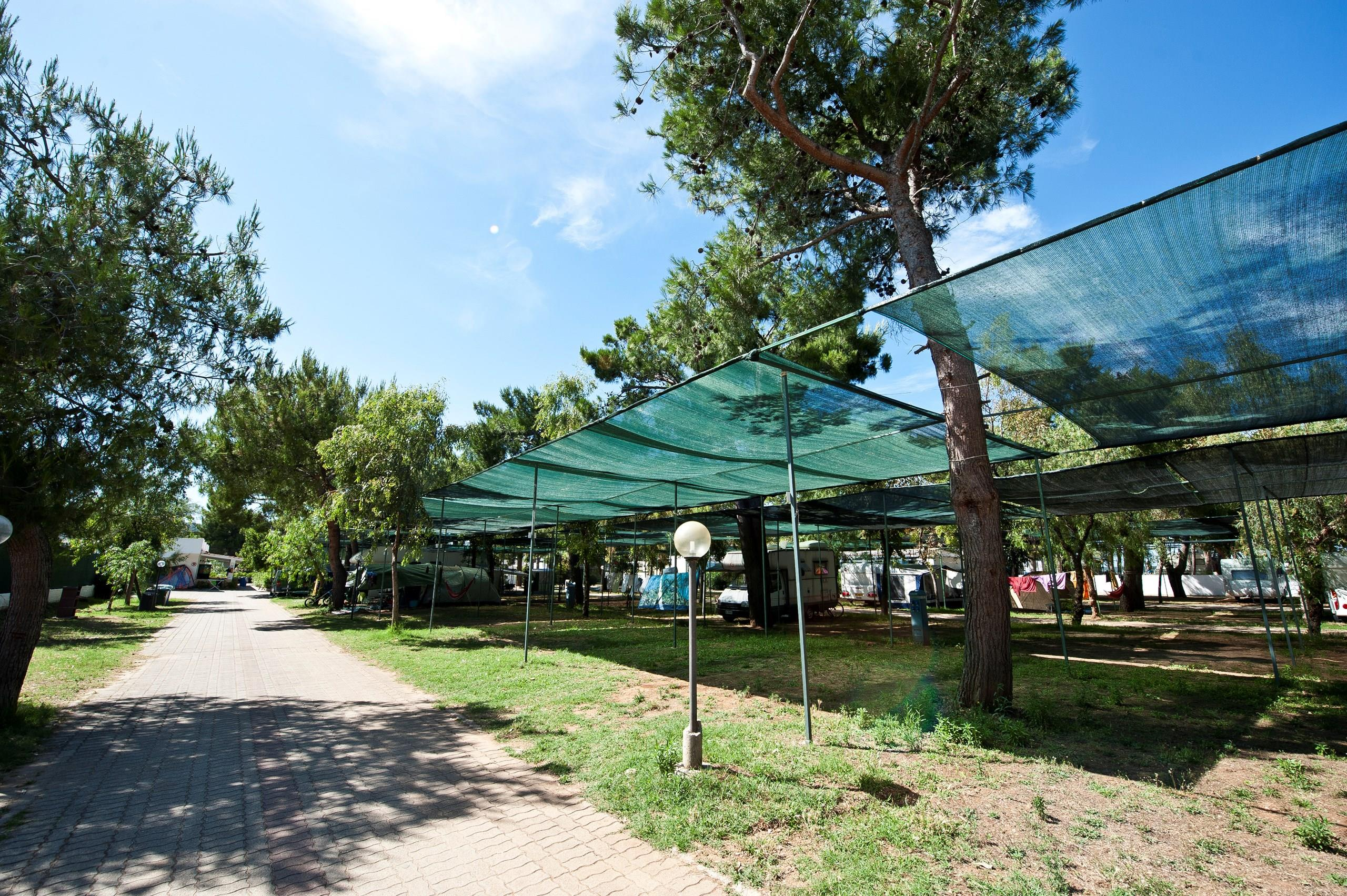 Emplacement - Emplacement - Camping Le Diomedee