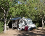 Pitch - Pitch Package Comfort (Car, Tent Or Caravan Or Camping-Car, With Electricity 6A) - Camping le Lac Bleu