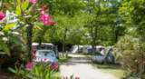 Pitch - Pitch - 80M² - Camping Les Coudoulets