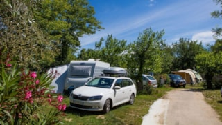 Camping pitches with private bathroom (20m from the pitch)