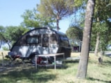 Pitch - Pitch car and caravan - Camping Village Internazionale Firenze