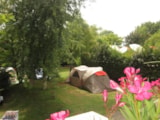 Pitch - Comfort Package (1 tent, caravan or motorhome / 1 car / electricity 10A) - Flower Camping LE TEMPS DE VIVRE