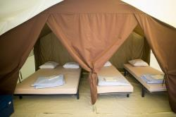 Huuraccommodaties - Bungalowtent Classic Iv - Huttopia Royat