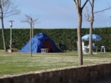 Pitch - Pitch : Car + Tent Or Caravan + Electricity - Camping del Mar