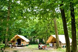 Huuraccommodatie - Canadienne Tent - Huttopia Versailles