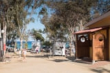 Pitch - Pitch for Caravan / Large Tent - Camping Capo Ferrato