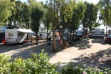 Pitch - Pitch for Camping Car - Camping Capo Ferrato