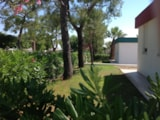 Rental - Bungalow two-roomed with air conditioning - Residence Camping Atlantide