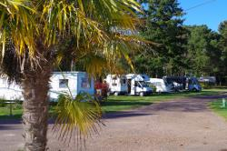 Establishment Camping De L'hermitage - Guemene-Penfao