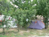 Pitch - Pitch Small Tent - Agriturismo Alba