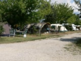 Pitch - Pitch Large Tent - Agriturismo Alba